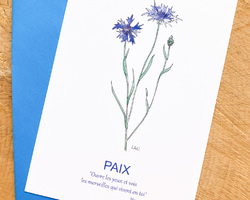 Carte Bleuet - Paix