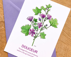 Carte Mauve - Douceur