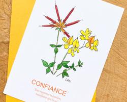 Carte Lotier corniculé - Confiance
