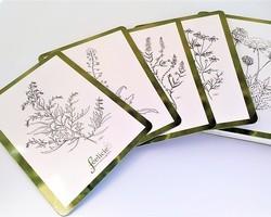 Le Message des Plantes - Tome 1
