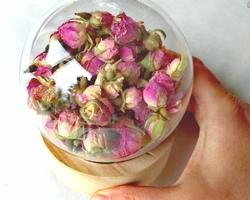 Une petite bulle de Rose